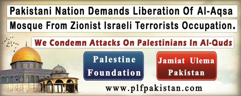 plf_protest_banner